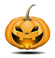 pumpkin halloween vector image