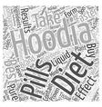 best hoodia diet Word Cloud Concept vector image