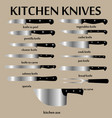 cutting knives set poster butcher diagram vector image