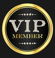 VIP member badge VIP composed from small diamonds vector image