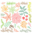 set of different nuts leaves hand drawn vector image