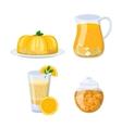 Glass of orange juice vector image