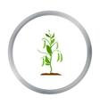 Peas icon cartoon Single plant icon from the big vector image