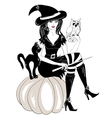 witch cartoon vector image