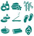 minimalistic spa icons set vector image