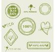 Green grunge rubber stamp set vector image