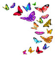 background with flying butterflies vector image