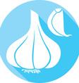 Onion Icon vector image vector image