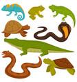 reptiles and reptilian animals turtle crocodile vector image