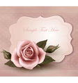 Retro greeting card with pink rose vector image vector image