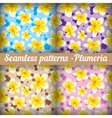 Plumeria Set of seamless patterns Floral vector image