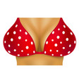 Sexy breasts in red bra with white dots vector image