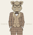 Fashion of wild boar in tweed suit vector image