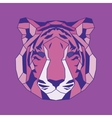 Pink lined low poly tiger vector image