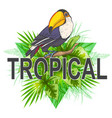 green palm leaves and toucan vector image vector image