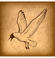 flying bird background vector image vector image