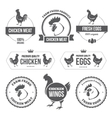 Chicken meat and eggs 1 vector image