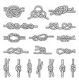 different nautical knots and vector image
