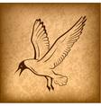 flying bird background vector image