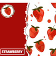 Strawberrycover vector image