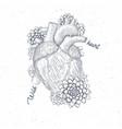 human flora heart hipster tattoo art medical vector image