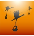 a stork with a baby vector image