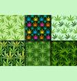 Green marijuana background vector image