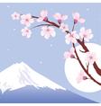 Mount Fuji moon and branches of sakura vector image
