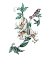 Painted bouquet of garden flowers with bird on vector image