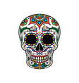 Mexican sugar skull with colorful floral ornament vector image