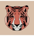 Red lined low poly tiger vector image