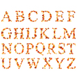 alphabet autumn set vector image vector image