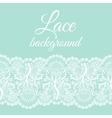 mint lace border vector image