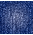 Photorealistic of jeans texture vector image