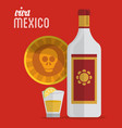 viva mexico tequila skull card vector image