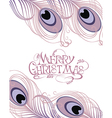 Merry Christmas card with feathers vector image