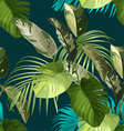 Tropical leaf pattern vector image