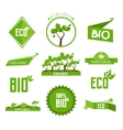 Green labels and badges set vector image
