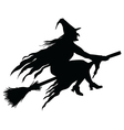 Wicked Witch Silhouette vector image