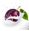 Blue plum in a milk splash on a transparent vector image