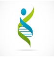 DNA genetic symbol - man icon vector image vector image