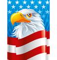 Symbol of USA vector image