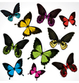 set of colorful butterflies vector image vector image