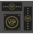 Black VIP cards vector image