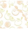 drawing pattern of citrus orange and lemon vector image