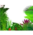 Nature background forest vector image