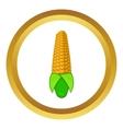 Corn cob icon vector image