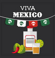 viva mexico greeting image vector image