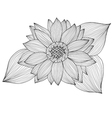 decorative sunflower vector image vector image