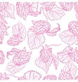 drawing pattern of raspberries vector image